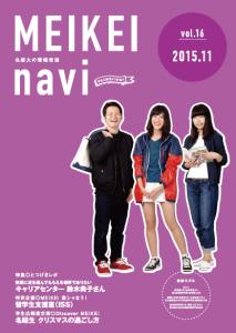 navi11